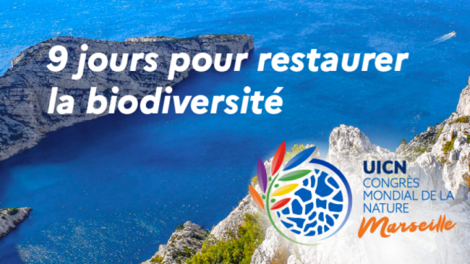 IUCN_banniere-FB_640x360.png